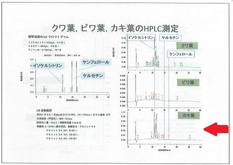 柿の葉機能性2a