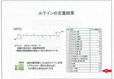 柿の葉機能性3