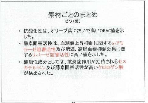 柿の葉機能性5b